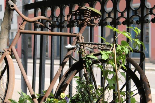 Oslo, gamlebyen sykkel resized