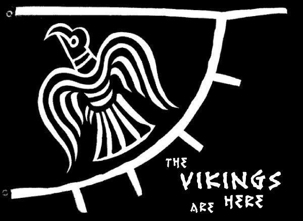 Viking Banner The Vikings Are Here
