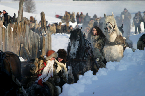 Rørosmartnan hest