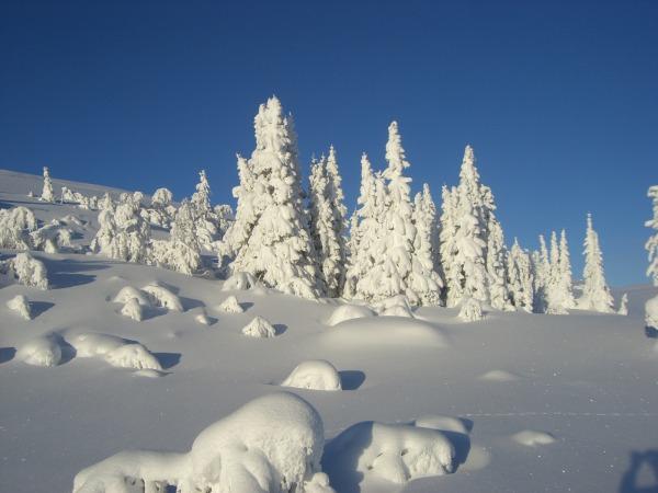 Vinter - Snorre Enger