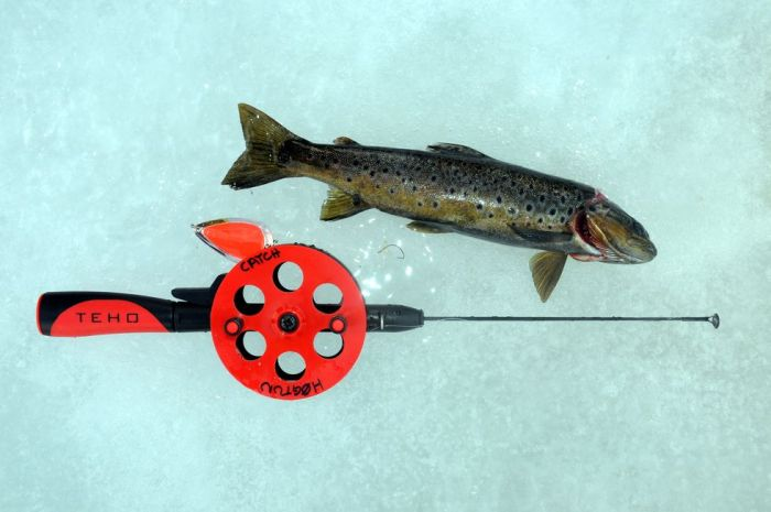 Ice Fishing Western Norway 2