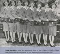 New words - stewardess