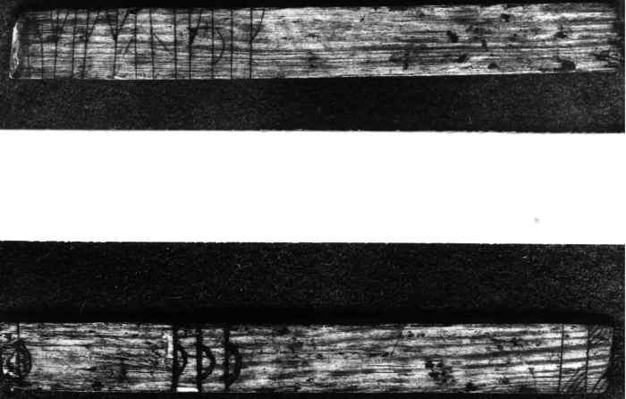 Runer fra Bergen