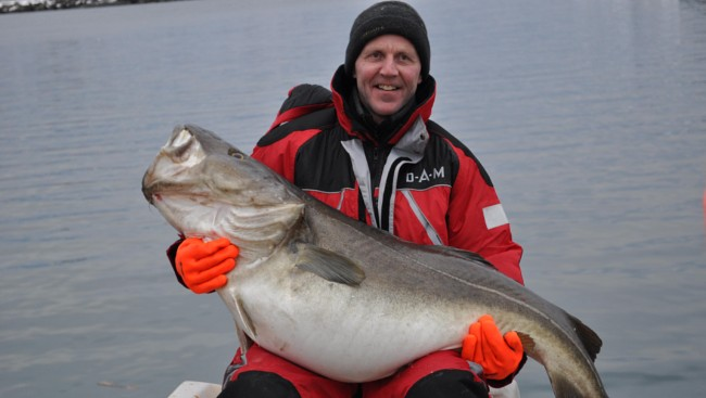 World's Biggest Atlantic Cod