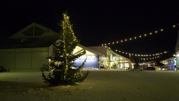 Norway's Saddest Christmas Tree Longyearbyen Replacement