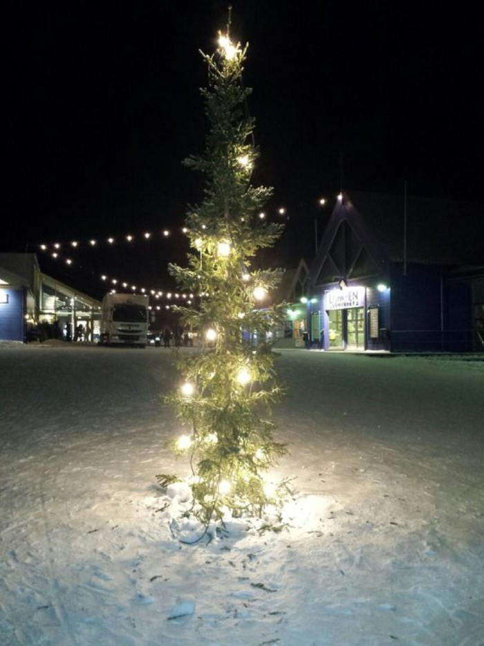 Norway's Saddest Christmas Tree Longyearbyen