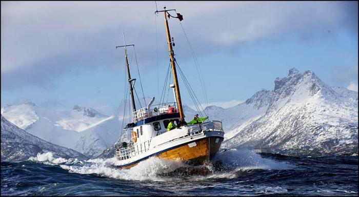 Fishing in Lofoten Norway