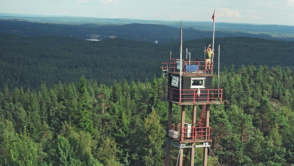 unusual summer jobs fire lookout operator thornews summer job in