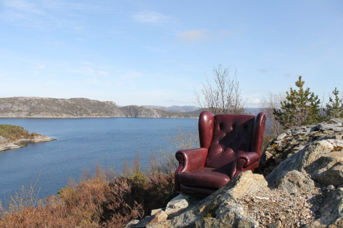 Leather Chair Norwegian Wilderness
