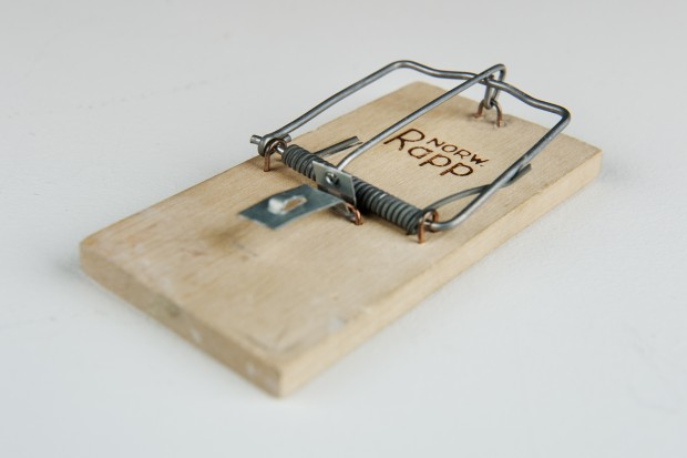 Most Popular Mousetrap