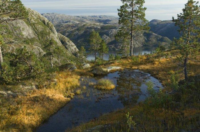 Lomsdal-Visten National Park Nordland Norway
