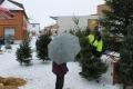 Christmas Tree Seller Norway