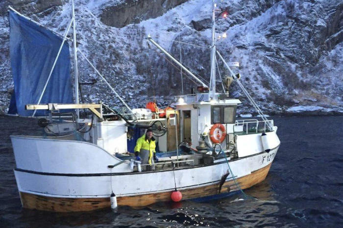 Cod Net Fishing Norway