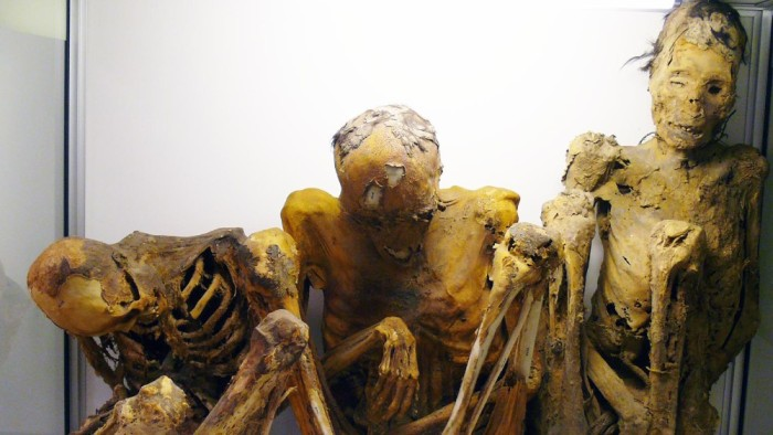 2500 Years Old South American Mummies