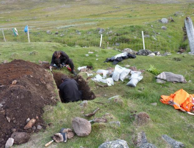 Viking Age Barley Greenland