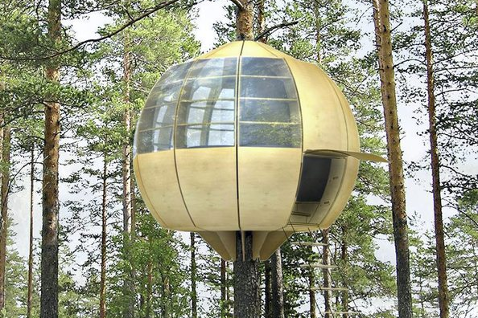Tree House Norway