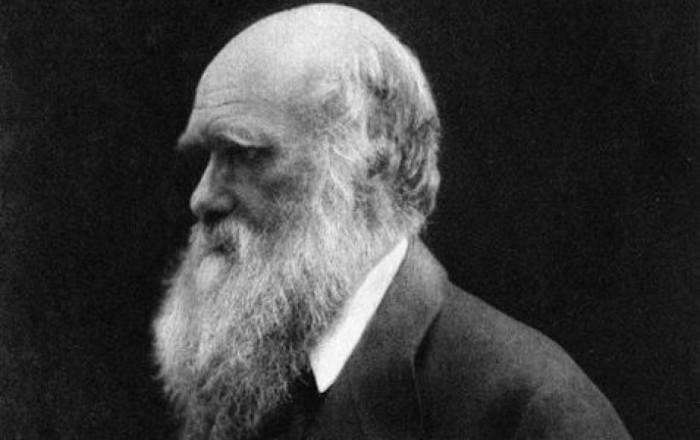 Mr. Lawson - Charles Darwin