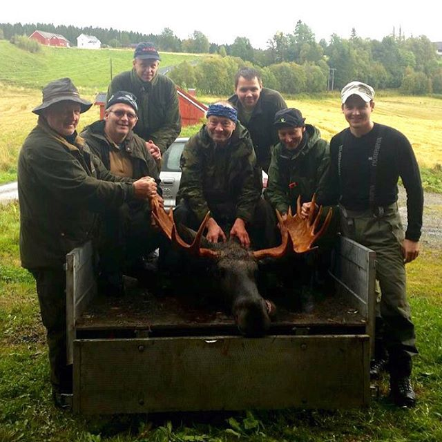 Moose Hunting Central Norway 3