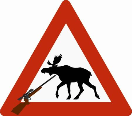 Danger Moose