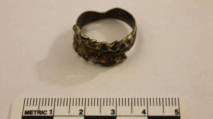 Wolf Ring Viking Age