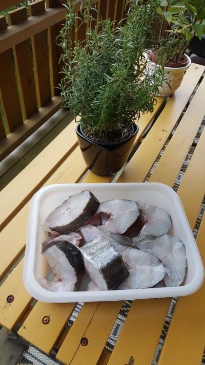 Pollock Fishmeat Grill Small