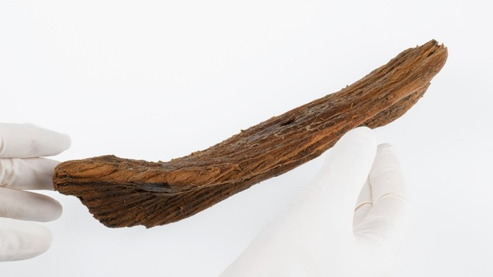 Found 1000 Year Old Wooden Viking Ship Toy